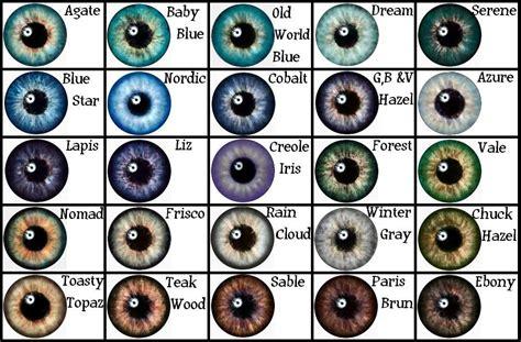 human eye color chart eye color charts on