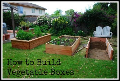 Garden In A Box by Building Vegetable Boxes For A Garden California