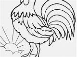 Coloring Rooster Pages Adults Farm Animal Crowing Printable Getcolorings Print Tsgos sketch template
