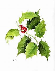 Christmas Holly Jean Wilmshurst JLW Designs Floral