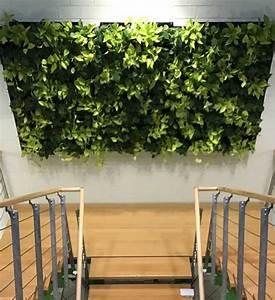 Pflanzen Im Treppenhaus : gr ne wand mit pflanzen im greenbop online shop kaufen ~ Orissabook.com Haus und Dekorationen