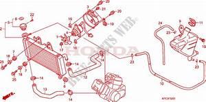 Wiring Diagram Honda Varadero 125