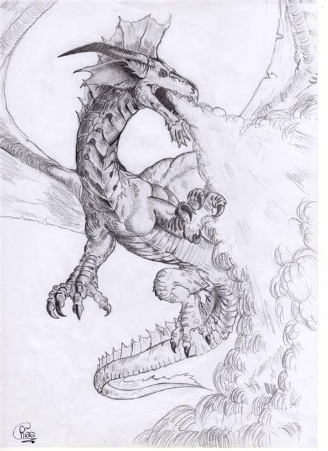 flying dragon  palli  deviantart