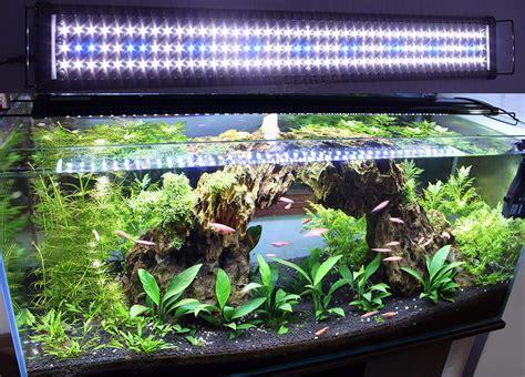 aquarium lighting  aquarium setup filtration