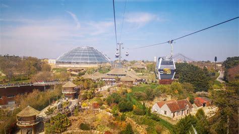 Le zoo de beauval a ouvert au public en 1980 sous l'impulsion de françoise delord, passionnée par les oiseaux et engagée dans leur sauvegarde. Zoo de Beauval ~ Le Moulin du Port