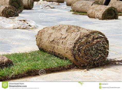 Turf Grass Rolls Stock Photos