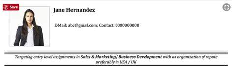 basic resume headline  resume examples