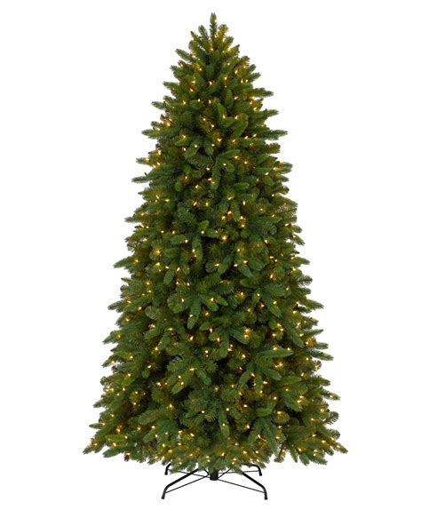classic fraser fir christmas tree tree classics