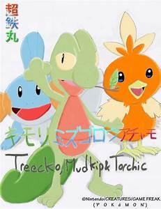 Treecko, Mudkip and Torchic by Chotetsumaru on DeviantArt