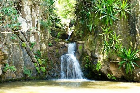 waterfalls in home price reduction haiku waterfall home for sale 171 maui real estate team blog