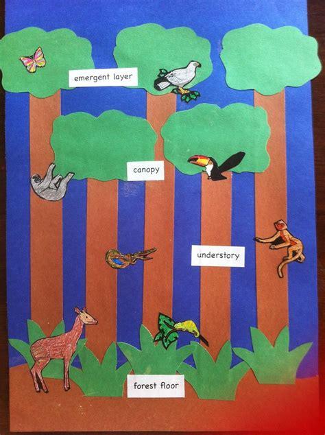 13 best forest theme images on rainforest 434 | 6f14e826bf11bfacc634b0d821f765c8 rainforest preschool rainforest crafts