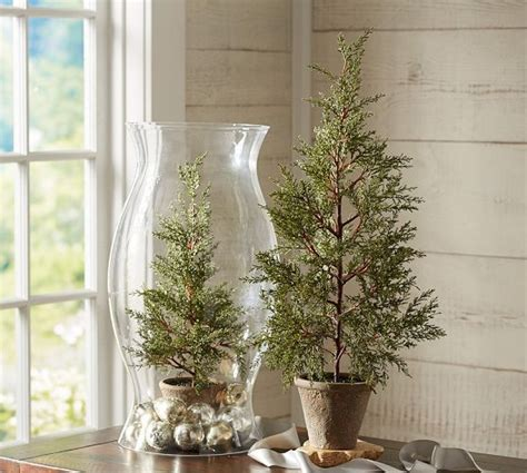 Pottery Barn Trees by Faux Potted Mini Pine Tree Pottery Barn