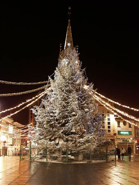 the tree at the clock tower leicester england natale