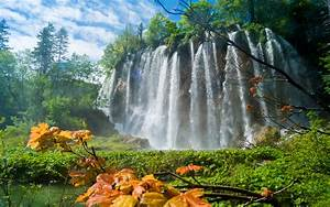Plitvice, Lakes, National, Park, Travel, Trees, Waterfall, Hd
