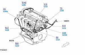 Ford Fiesta 1 25 Zetec Wiring Diagram