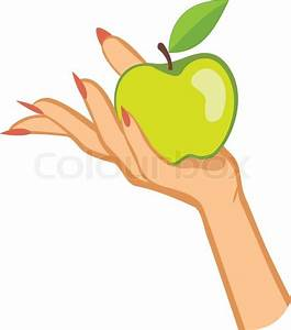 Woman U0026 39 S Hand Holding Apple  Colorful Vector Illustration