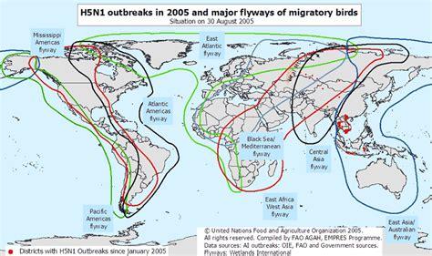 zee migration of birds