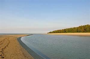 File:Estuary mouth.jpg - Wikimedia Commons