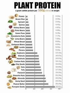 35 Best Vegetarian Protein Sources Chart Best Round Up