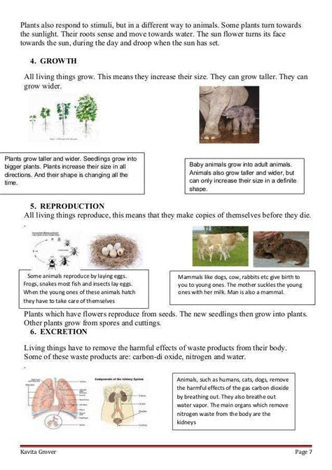 Printable Worksheets » Living Things And Their Environment Worksheets  Printable Worksheets