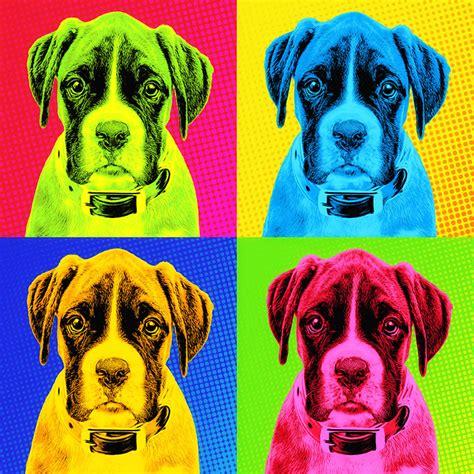 Vom Eigenen Foto by Pop Hunde Portrait Vom Eigenen Foto Auf Leinwand