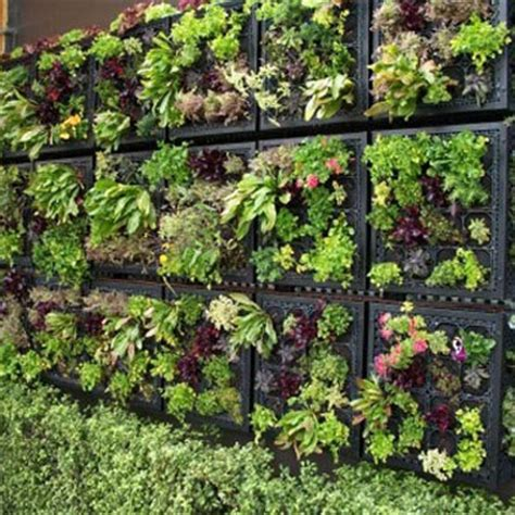 Vertical Gardening Techniques by Vertical Gardening The New Space Saving Technique