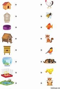 Jeux Enfant 4 Ans : chacun chez soi lulu la taupe jeux gratuits pour enfants ~ Dode.kayakingforconservation.com Idées de Décoration