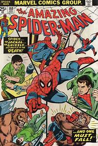 MARVEL COMICS GROUP THE AMAZING SPIDER-MAN 1975 ISSUE VOL. 1