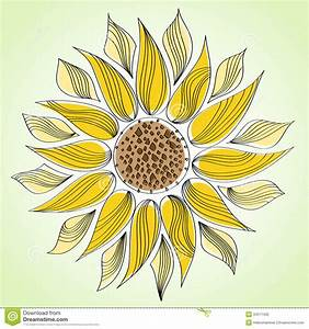 Abstract line sunflower stock vector Image of flora