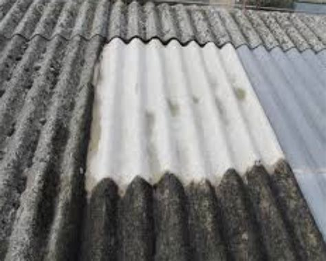 wa government issues asbestos safety alert building