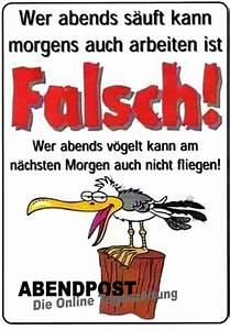 Fliegen Vom Auto Entfernen : lustige bilder ~ Watch28wear.com Haus und Dekorationen