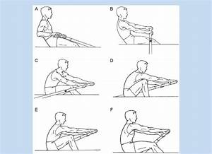 Phases Of The Rowing Stroke  A  The Finish  B  Early
