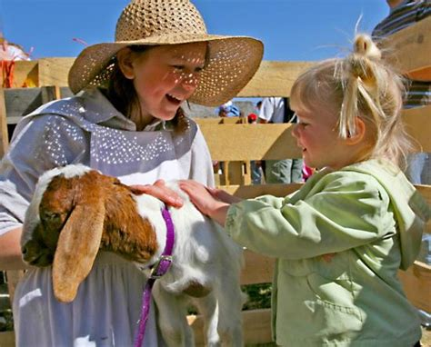baby animal days at the american west heritage center