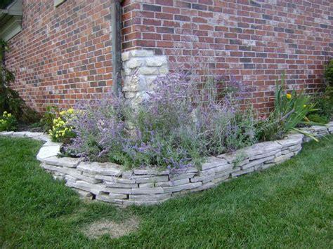 margarite gardens garden ideas and planting information