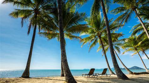 palm cove weather climate australia