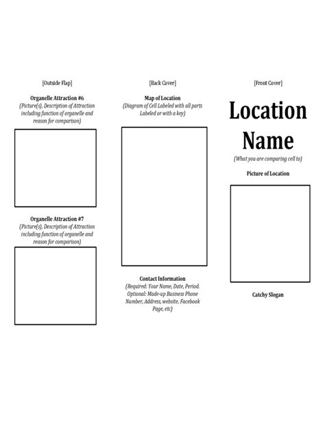 brochure template   templates   word excel