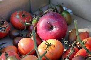 Grüne Tomaten Nachreifen : horizont 13 oktober 2013 ~ Lizthompson.info Haus und Dekorationen