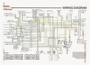 1984 Honda Vt500 Ascot Wiring Diagram