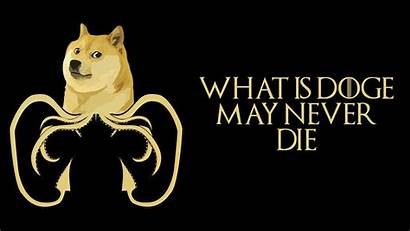 Doge Meme Wallpapers 1920 1080 Sunglasses Know