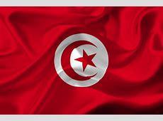 Tunisia Hands Duo 7 Year Jail Over Facebook Cartoon