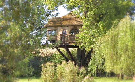 Sussex Luxury Tree Houses  Speed Property Buyers