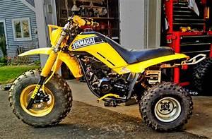 Custom Yamaha 225dx With Tri
