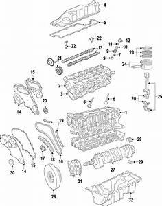 2008 Land Rover Lr2 Engine Timing Crankshaft Sprocket