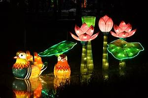 The Chinese Lantern Festival Is the Best Festival In Charlotte