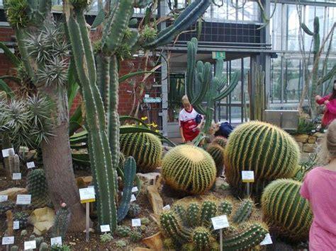 Botanischer Garten Kiel Führung by Sehr Sch 246 N Ich Besuchte Zwei Jahre Alten Wie Winter