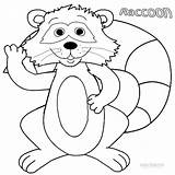 Coloring Raccoon Printable Pages Baby Cute Cool2bkids Everfreecoloring Facts Fun sketch template