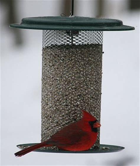 specialty bird feeders for feeding wild birds quality