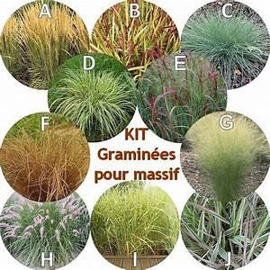 graminees pour massif en kit de 10 arbustes With modele de rocaille pour jardin 1 mon jardin en automne suite