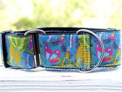 Butterfly Garden Martingale Dog Collar » Pampered Paw Gifts