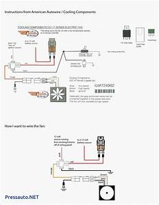Spal Wiring Diagram